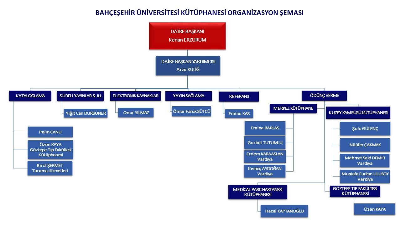 Organizasyon Şeması Türkçe